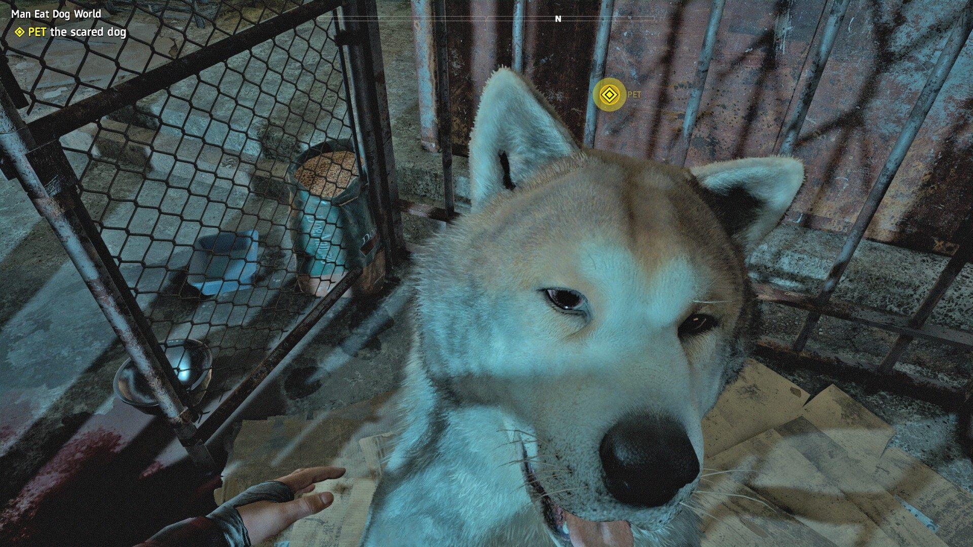 Man Eat Dog World Far Cry New Dawn Mission
