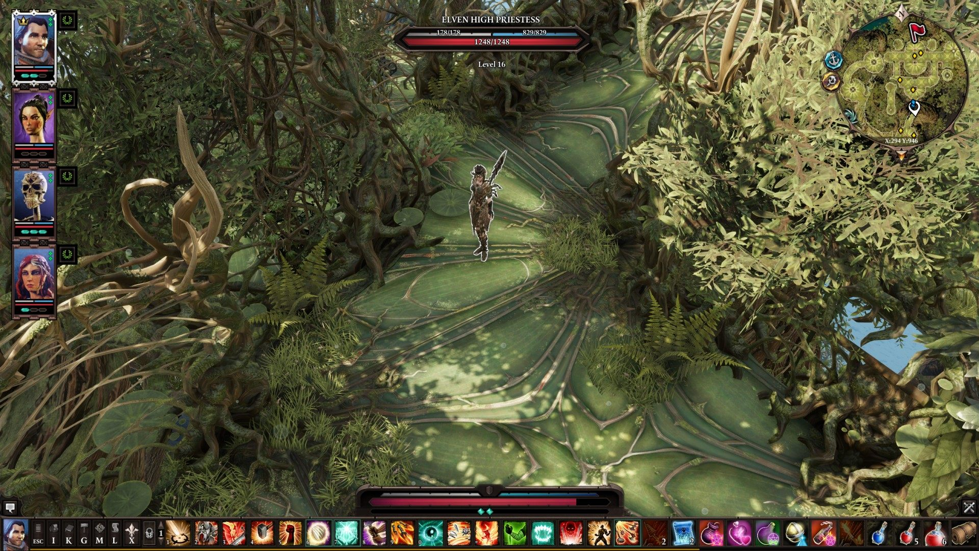 The Mother Tree, Divinity: Original Sin 2 Quest