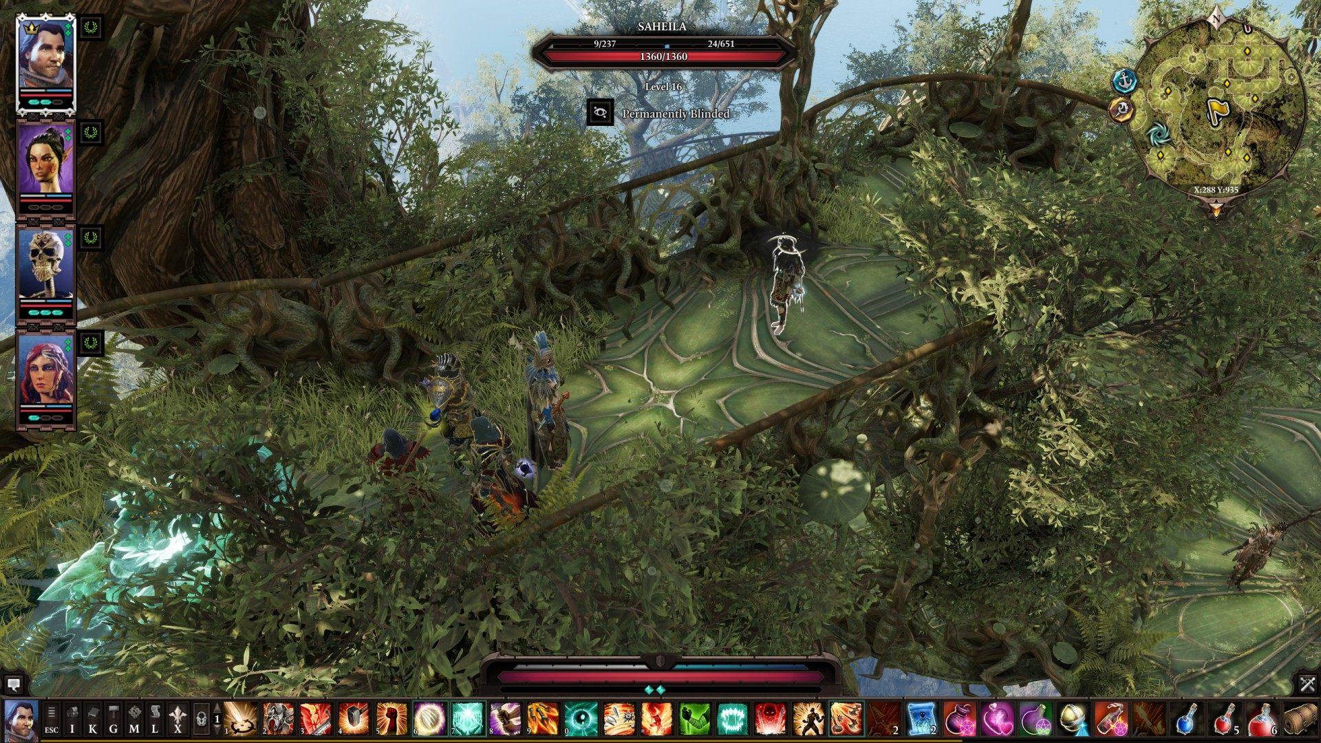 Sebille, Divinity: Original Sin 2 Quest