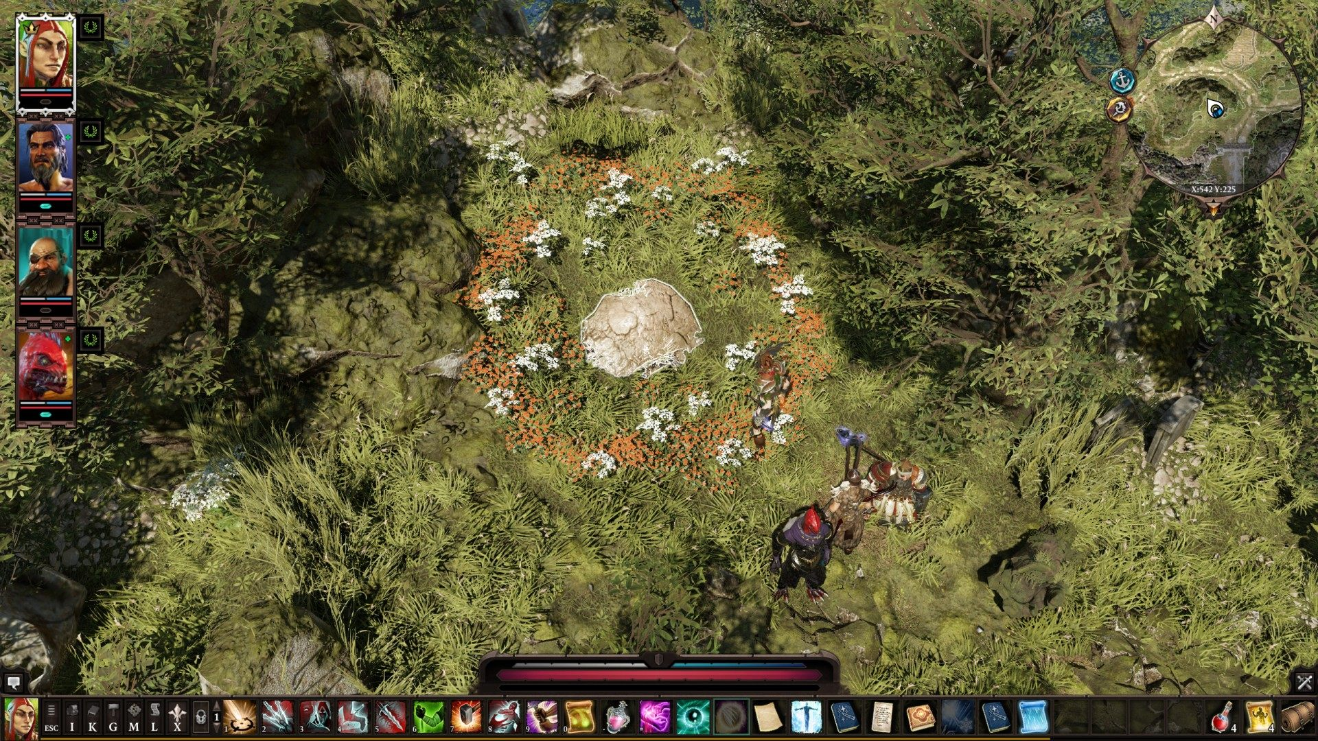 Others, Reaper's Coast, Divinity: Original Sin 2 Points of